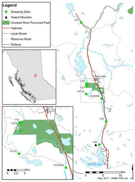 Map of sampling sites along the Crooked River, British Columbia.