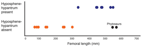 Plot showing femoral length versus hyposphene–hypantrum presence or absence (Table 2) with pseudosuchian archosaurs as data points (n = 24).