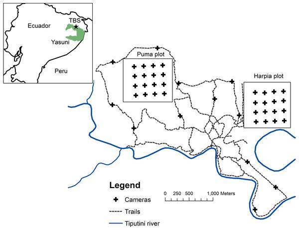 Map of camera locations at Tiputini Biodiversity Station.