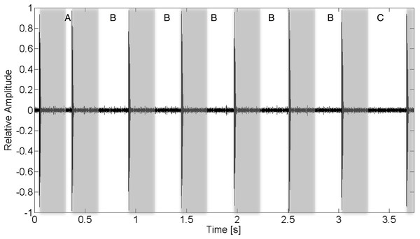 Recorded acoustic waveform of V13 tag transmission indicating the function of various inter-ping interval regions.