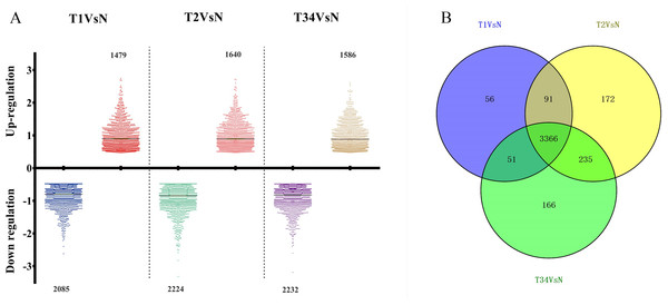 The number of differentially expressed genes obtained from the TCGA data among LUSC groups and controls.