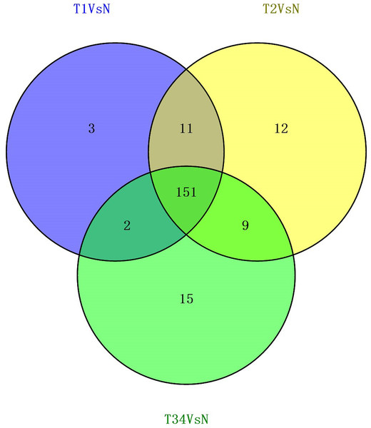 Venn diagrams showed the number of differentially expressed lncRNAs obtained from the TCGA data among LUSC groups and controls.