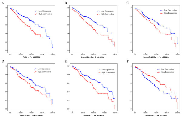 Kaplan–Meier survival curves for six ceRNA (PLAU, miR-31-5p, miR-455-3p, FAM83A-AS1, MIR31HG, and MIR99AHG) associated with overall survival.
