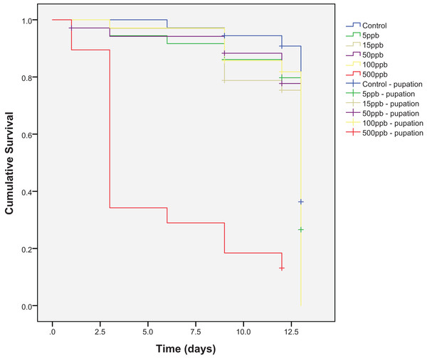 Cumulative survival of Eristalis tenax larvae (N = 33–38 per treatment) when reared in substrate contaminated with five different concentrations of thiamethoxam, plus control.