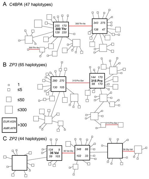 Gene genealogies of human gamete-recognition genes.