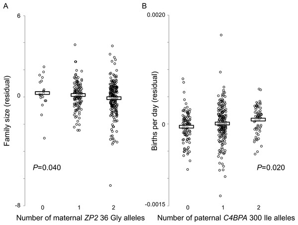 Fertility varies with genotype at two candidate sites under selection.