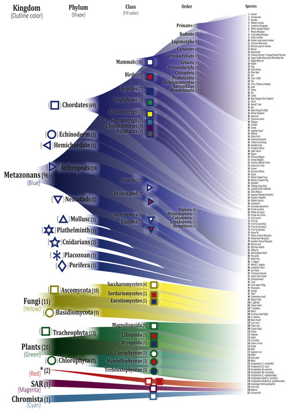 Depiction of the selected organisms and their correspondence in the Tree of Life.