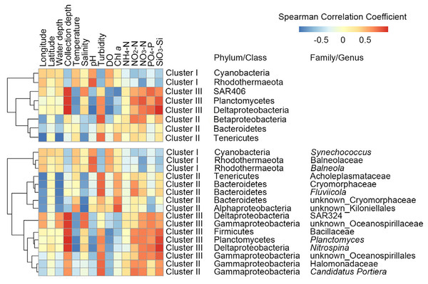 Spearman's correlations between the most significant taxa of each cluster (Fig. 2) and spatial factors, depth, physicochemical variables are shown in this heatmap.