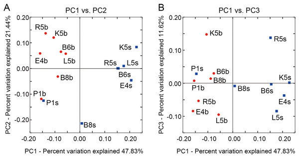 Spatial variations of bacterial communities are exhibited by principal coordinates analysis (PCoA) with the coordinates PC1 and PC2 (A), and the coordinates PC1 and PC3 (B).