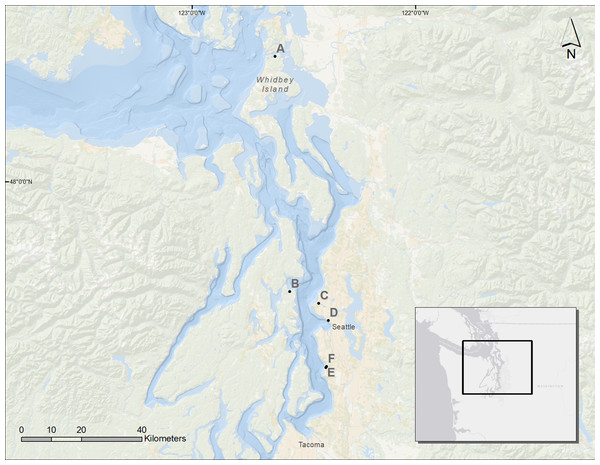 Map of the Puget Sound and the restored sites used for analysis.