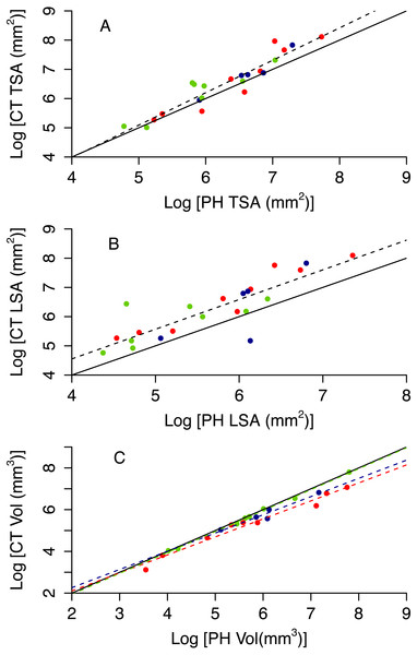Relationship between CT and PH estimates of colony size (A total surface area, B live surface area and C volume).