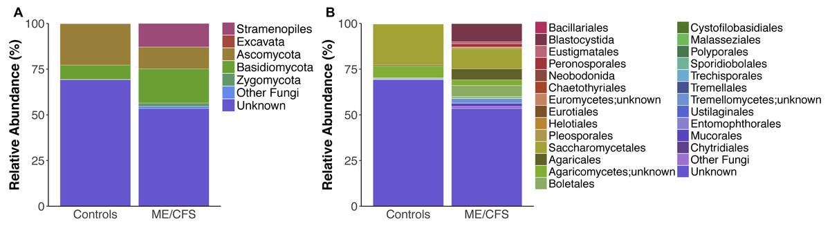 Eukaryotes in the gut microbiota in myalgic