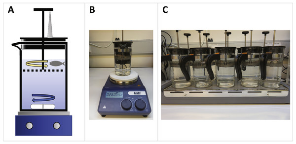 French press exercise system setup for maximal swim performance trials and exercise training of zebrafish.