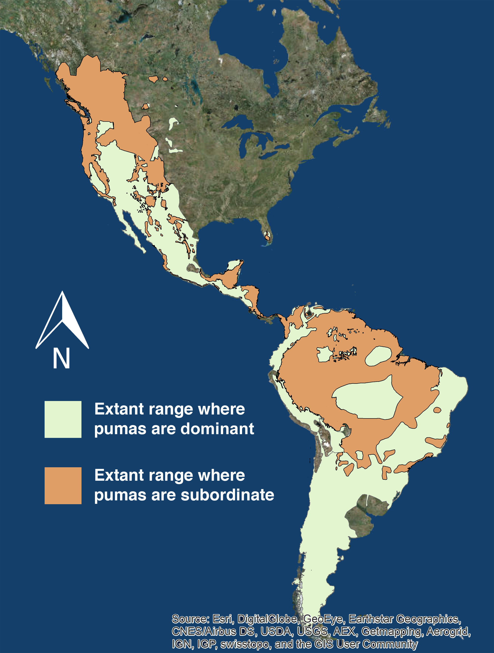 Are pumas subordinate carnivores, and does it matter? [PeerJ]