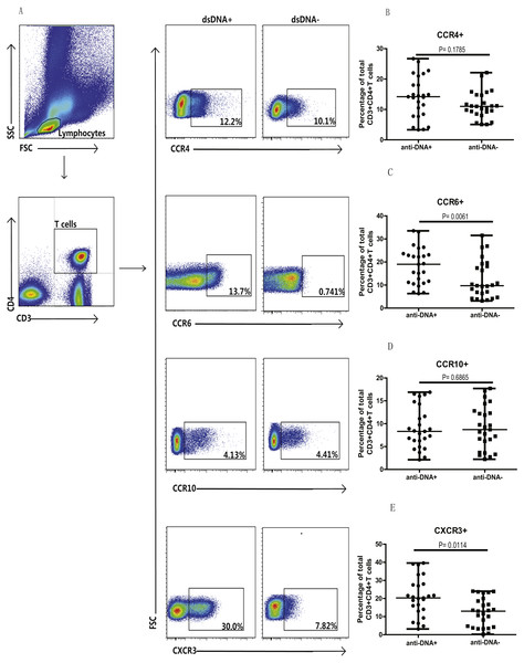 Analysis of circulating CD3+ & CD4+ T cells based on chemokine expression in SLE patients.