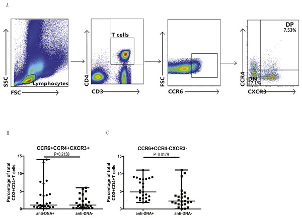 Analysis of circulating CCR4/CXCR3 DP and CCR4/CXCR3− DN CCR6+ T cells in SLE patients.