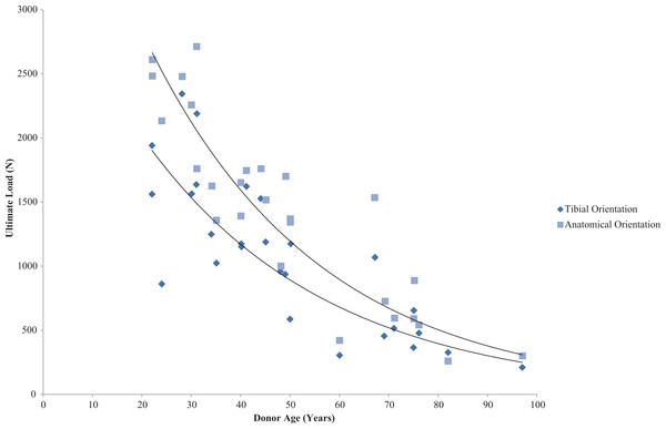 Effect of specimen age on anterior cruciate ligament ultimate load.