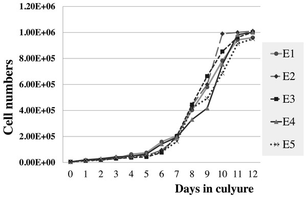 Growth curve of elephant skin fibroblasts at passage 6 (P6) obtained from five elephants.