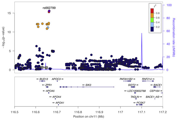 The top Cebu GWAS signal, rs662799, which associated with TRIG levels is 571 bp upstream of APOA5.