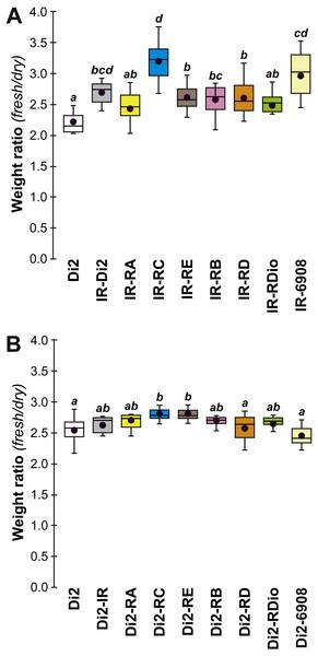 Fresh:dry weight ratio in various desat1 transgenic females.