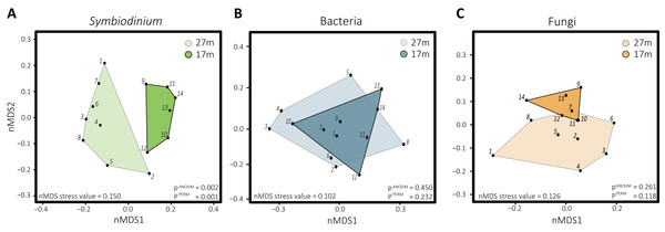 Non-metric multidimensional scaling plots with corresponding stress values of the distinct microbial groups associated with S. siderea: (A) Symbiodinium, (B) bacteria, (C) fungi.
