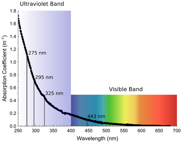 Exponential decay of absorption coefficients as wavelengths increase from the ultraviolet to the visible band.