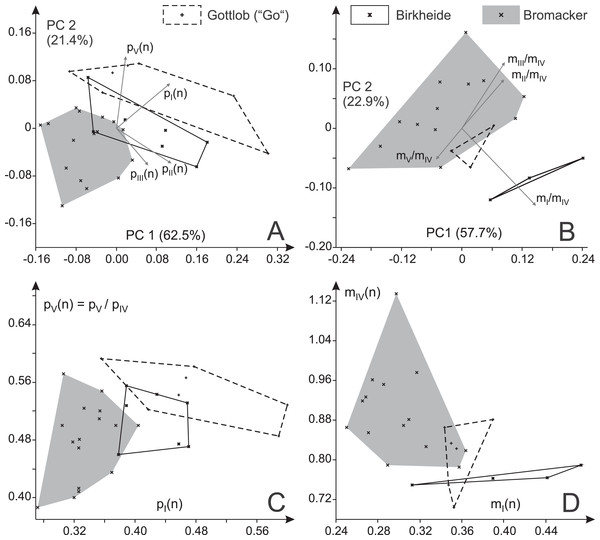 Variability in the toe ratios of Ichniotherium cottae from three Thuringian Forest localities.