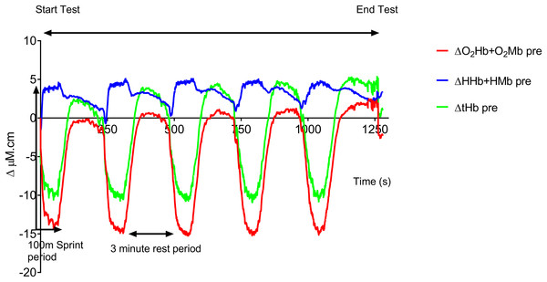 Group mean pre-training hemodynamic responses during the repeat swim test.