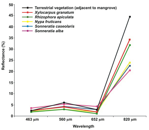 Spectral reflectance of mangrove and non-mangrove vegetation.