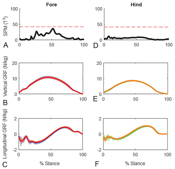 Results of statistical parametric mapping of ground reaction forces at trot overground for a group of 10 horses (mean of 3 stance phases per horse, per limb).