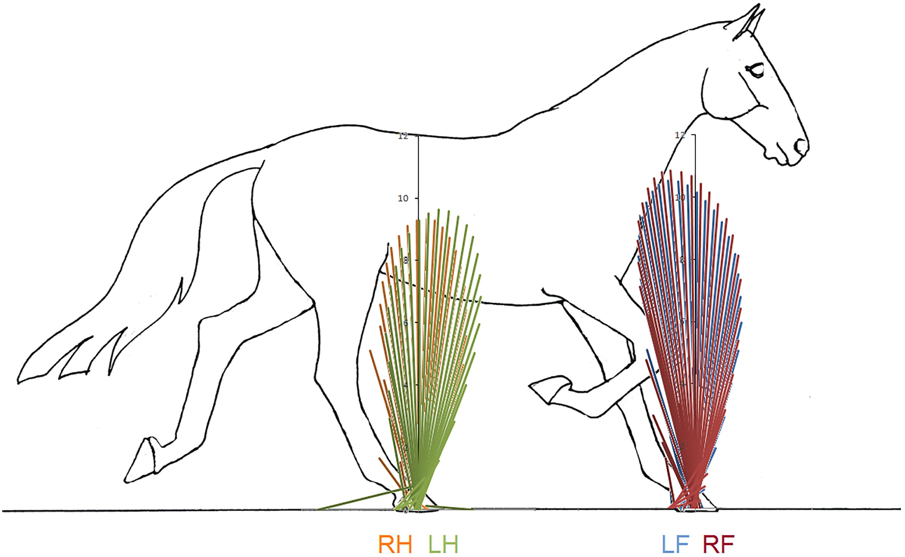 A simple method of equine limb force vector analysis and its download full size image pooptronica