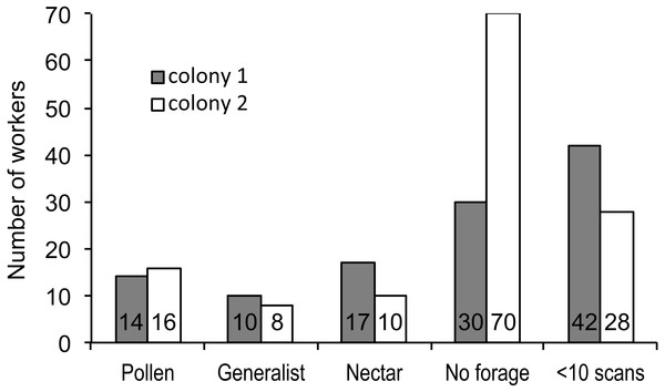 Foraging specialization by colony.
