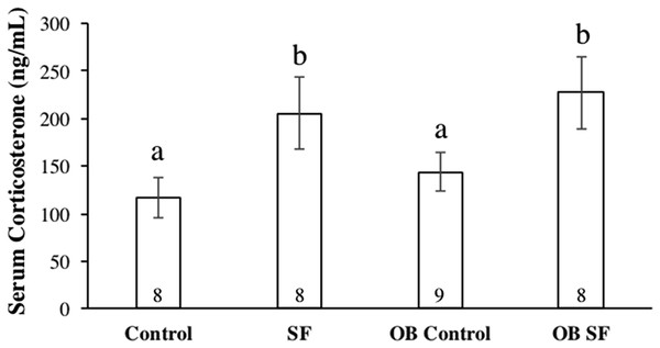 Serum corticosterone concentrations after 24 h of sleep fragmentation or control conditions in wild-type (lean) and leptin-deficient (OB) mice.