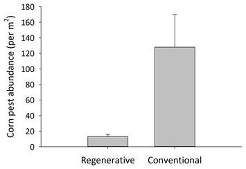 Image Result For Regenerative Medicine Solutions