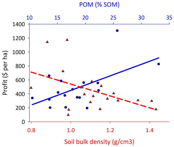 Corn fields with high particulate organic matter and low bulk density in the soil have greater profits.