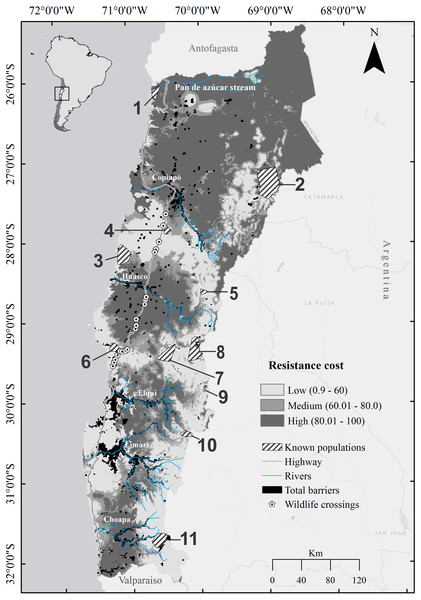 Map of landscape resistance for the guanaco Lama guanicoe in Chile's Norte Chico.