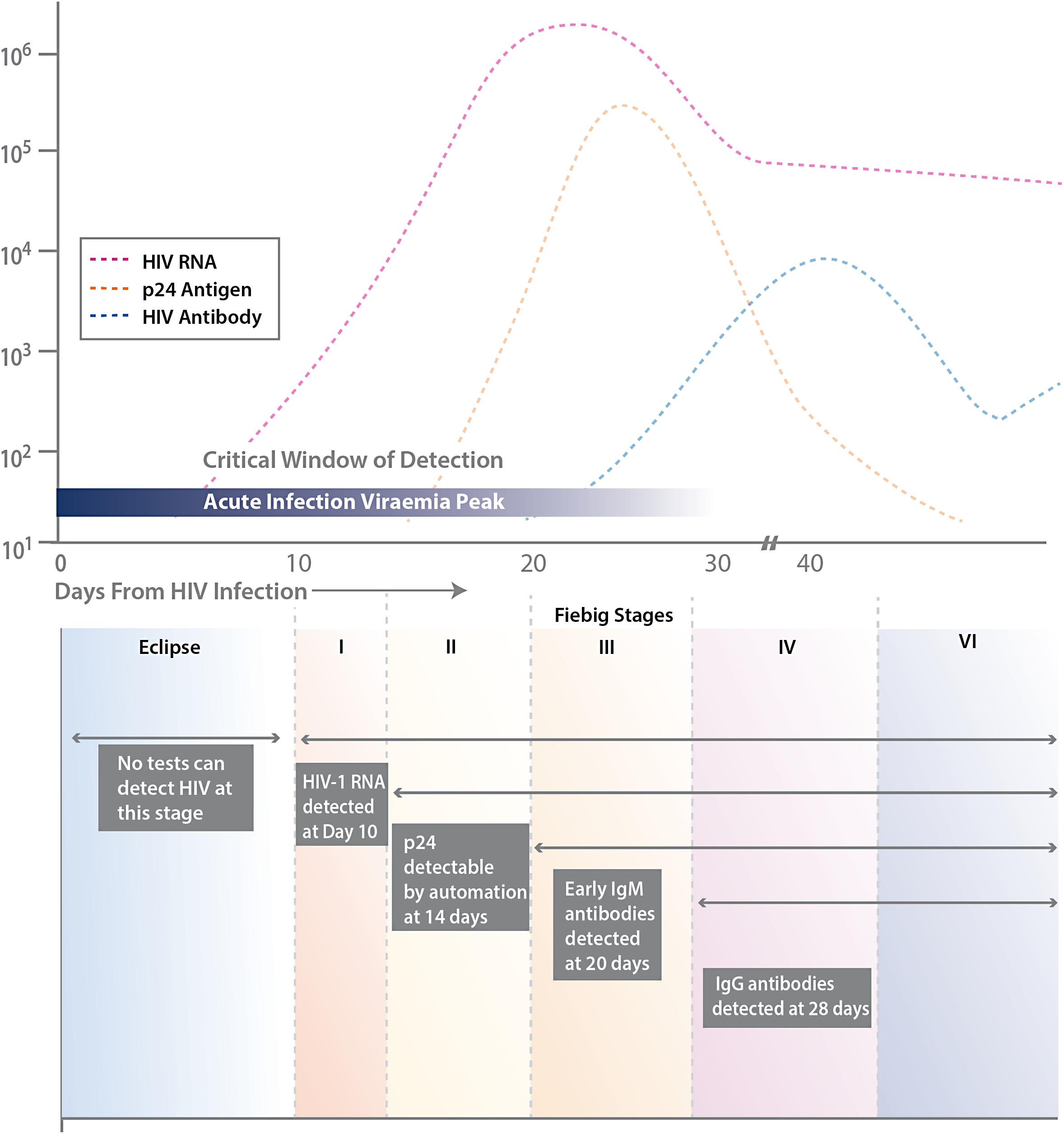 Human anti-HIV IgM detection by the OraQuick ADVANCE® Rapid