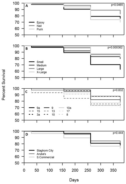 Survival analysis (Kaplan–Meier p < 0.05) of outplanted Acropora cervicornis colonies after one year by attachment technique (A), size class (B), genotype (C), and site (D).