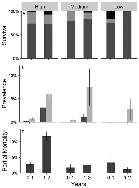 Survival (A), cumulative prevalence of conditions (B), and partial mortality (C) on outplanted Acropora cervicornis colonies.
