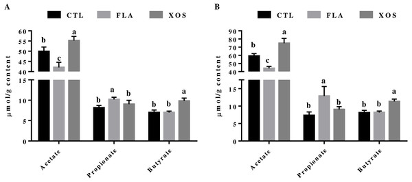 Short-chain fatty acid concentrations in the cecum (µmol/g).