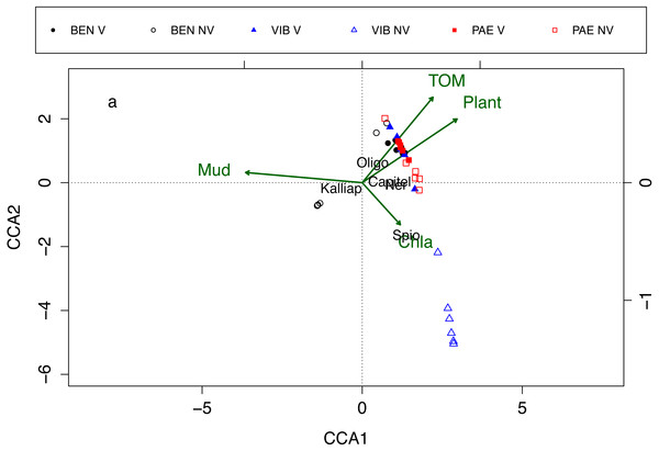 Canonical correspondence analysis of macrofaunal assemblages and environmental variables.