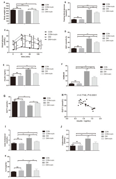 The effect of inulin on body weight, fasting blood glucose, blood glucose in OGTT, serum insulin, HOMA-IR index, GLP-1, blood lipid panels, pro-inflammation cytokine, and hepatic TG content.