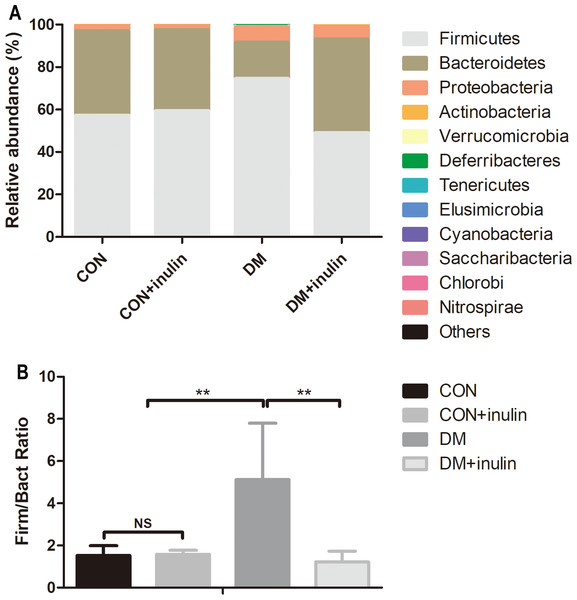Fecal microbial communities at the phyla level.