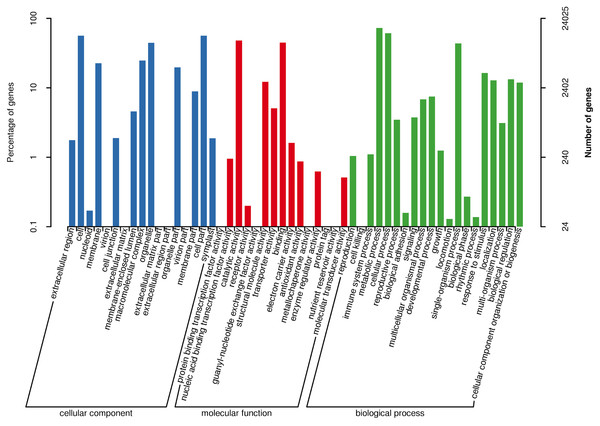 Gene ontology (GO) annotations of all detected genes.