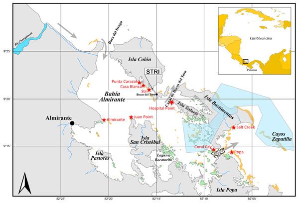 Sampling sites in Bocas del Toro.