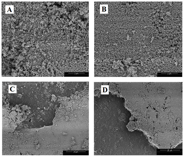SEM images of TiO2-400 °C on glass spheres surface before use (A and C) and after five photocatalytic treatment cycles (B and D).