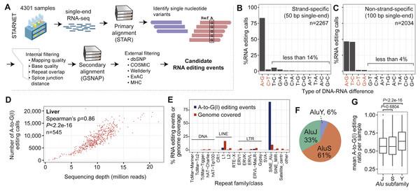 General characteristics of RNA editing events.
