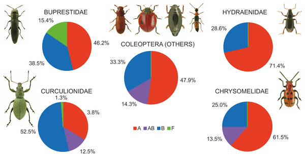 Shares of beetles infected by Wolbachia supergroups (A, B, F).