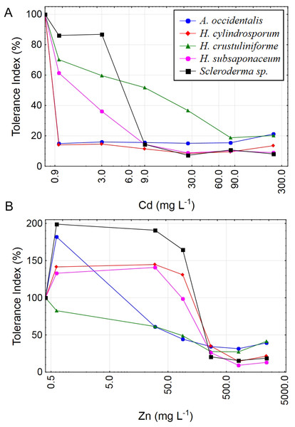 Tolerance index for five ectomycorrhizal fungi exposed to Cd and Zn.