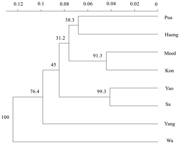 UPGMA dendrogram of eight population samples of Garra cambodgiensis based on Nei's genetic distance (Nei, 1978) (indicated by a scale bar) with 1,000 bootstrap replicates at 11 microsatellite loci (bootstrap values are shown at nodes).
